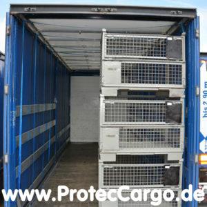 CGS Ladungssicherungs System
